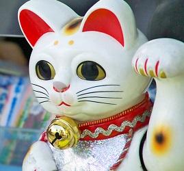 chinese_cat_270x250